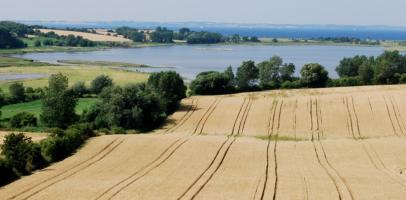 Duńskie rolnictwo
